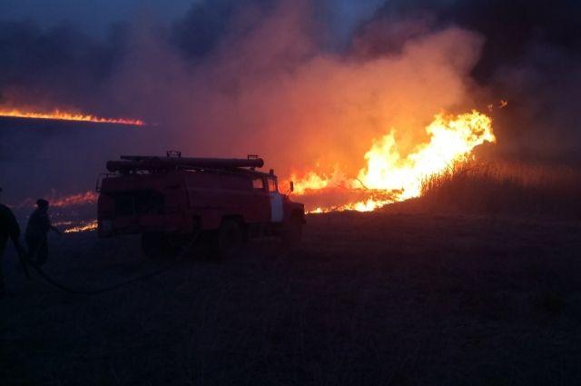 Под Черкассами из-за поджога сухой травы едва не сгорело село