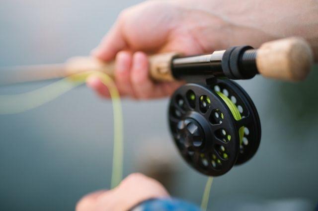 В Ноябрьске выловили необычную для северных рек рыбу