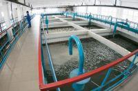 На данный момент заявлений об изменении качества воды не зафиксировано
