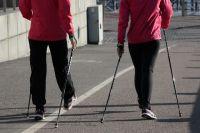 На мероприятиях новосибирцев будут обучать скандинавской ходьбе.