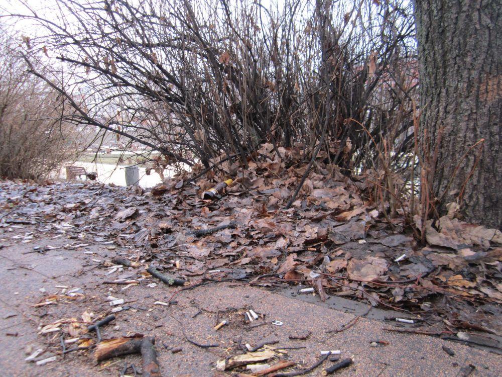 За зиму в общественных местах скопилось немало мусора.