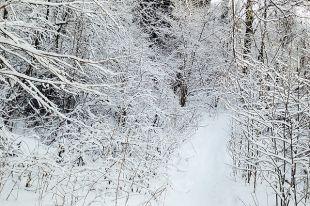 Мужчину нашли в снегу.