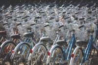 Врачи призывают тюменцев пересесть на велосипеды