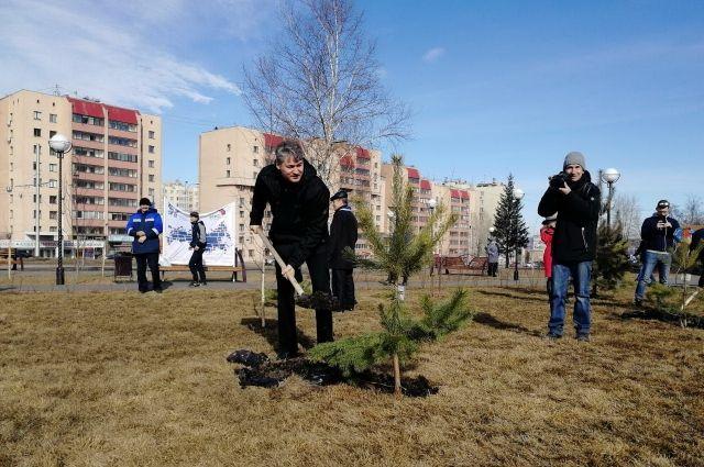 Участники акции высадили 20 деревьев на улице Соборная.