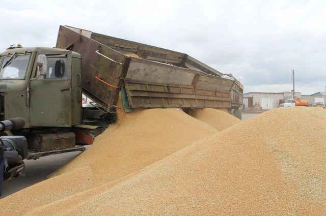 Продукция была выращена сельхозпредприятием ЗАО «Авангард» Шарыповского района