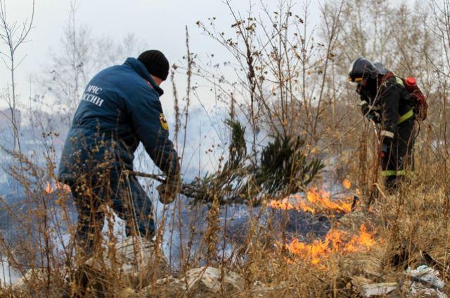 В Тюмени зафиксированы первые в 2019 году случаи возгорания травы