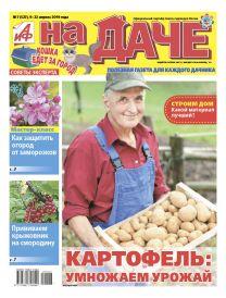 Картофель: умножаем урожай