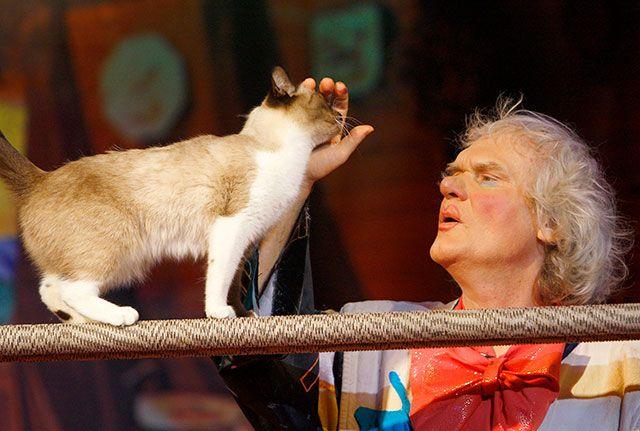 Спектакль «Королева кошек» в Театре кошек Ю.Куклачева.