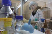 Новосибирские ученые - лидеры во многих научных отраслях.