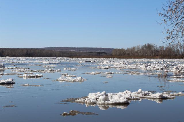 За последние сутки уровень воды на реках, освободившихся ото льда, снизился.