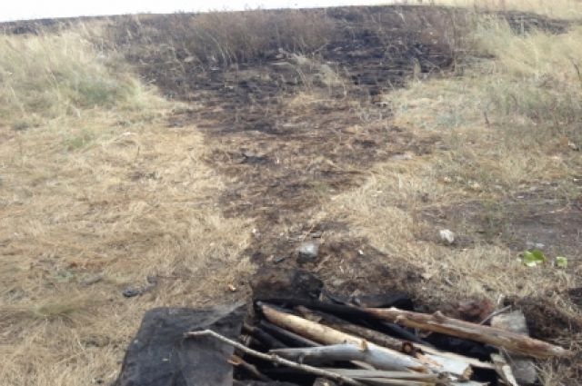 В Оренбуржье за одни сутки сгорело 2,5 га степи