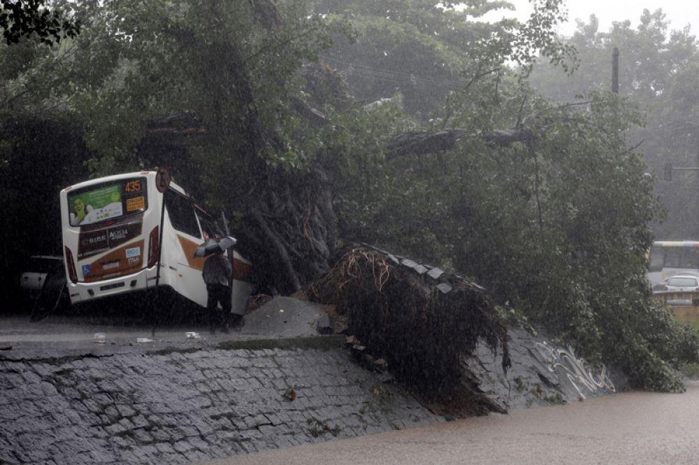 Автобус под упавшими деревьями в районе Леблон.