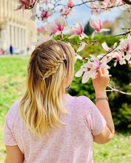 В Ужгороде вслед за магнолиями зацветут и сакуры - не пропустите это завораживающее зрелище.