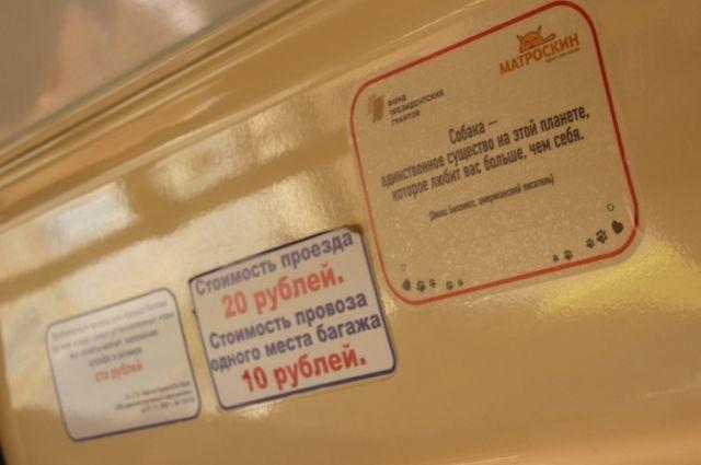 В общей сложности, в салонах трамваев появятся 300 наклеек с 29 цитатами про защиту животных