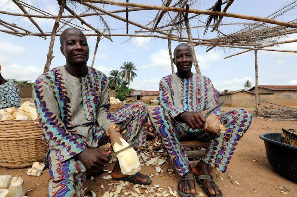 Близнецы Кехинде и Тайво Адерогба чистят клубень маниоки.