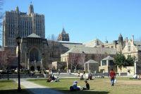 Изучение бизнеса в США: что учесть при выборе университета?