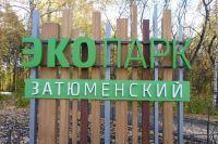 В Затюменском парке неизвестные сожгли деревянную скульптуру лося