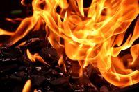 Девять часов огнеборцы тушили пламя.