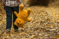 Прогулки с ребенком на поводке – довольно распространённое явление В США и Азии.