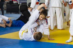 Новосибирские спортсмены завоевали 25 медалей разного достоинства.