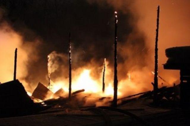 Во Львовской области в результате пожара погибло около 500 свиней