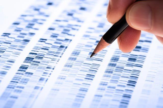 Зачем нужен генетический паспорт?