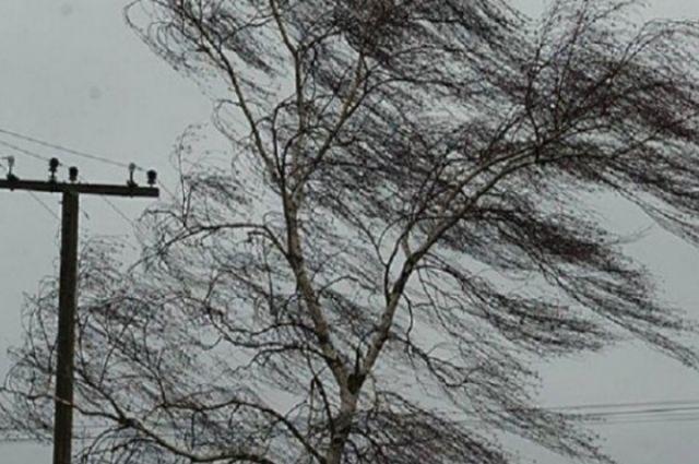 Ветер сорвал крышу частного дома в Новосибирской области