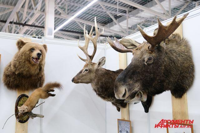 На площадке выставочного центра «Пермская ярмарка» свою продукцию представили 90 участников из 35 городов России.