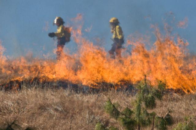 горящую траву тушили под Тюменью