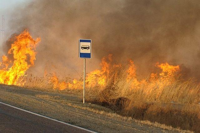 Люди всерьез опасались, что огонь мог перекинуться на жилые дома