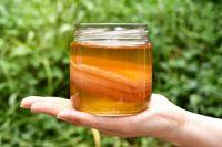 Почти у каждой семьи на подоконнике размножался и пузырился чайный гриб, а мама заставляла натощак выпить стакан.