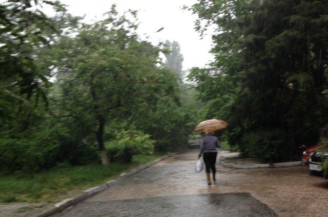 Новосибирцев ждет потепление до +13 градусов и дожди