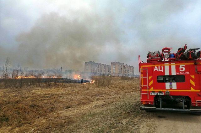 Причиной пожаров мог стать пал травы.