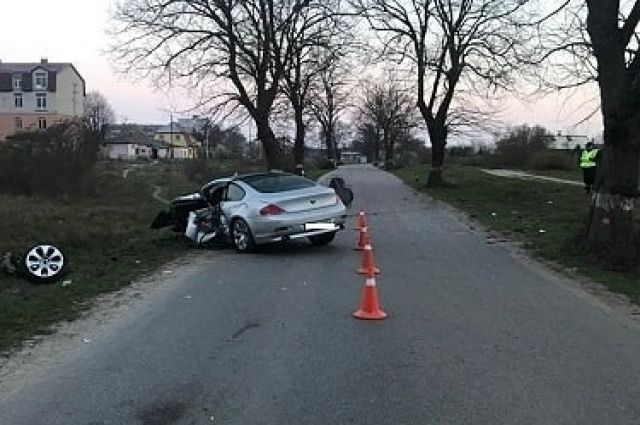 Под Зеленоградском водитель BMW получил травмы при столкновении с деревом