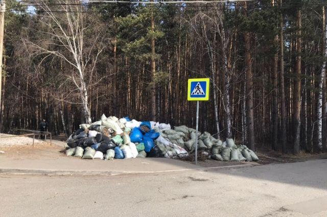 Красноярцы собрали 11 тыс. 297 кубометров мусора.