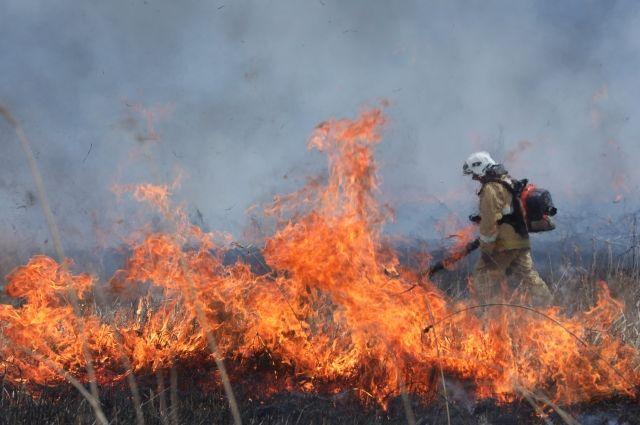 Дачные дома едва не сгорели дотла под Хабаровском.