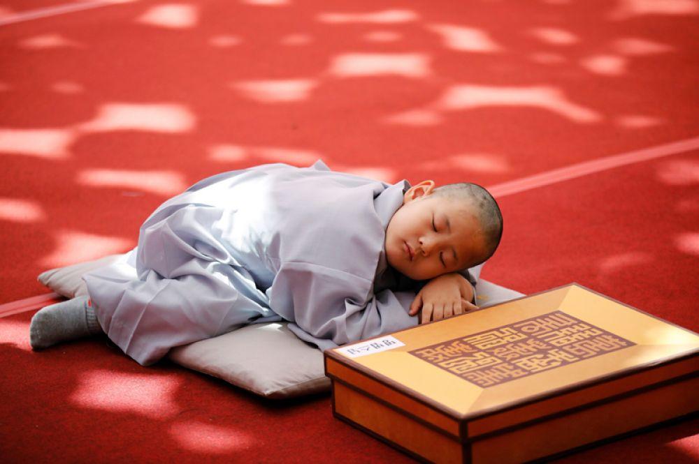 Юный монах дремлет в храме Джогье в Сеуле.