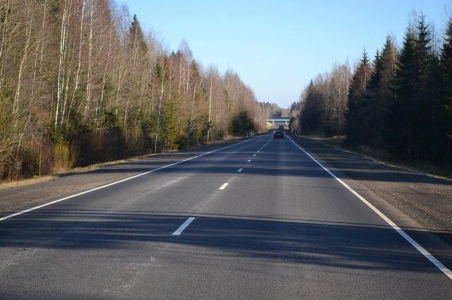 Улицу Краснореченскую от шума будут спасать деревьями и кустами.