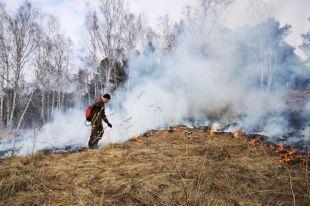 Пожар произошел на площади в 6 Га 23 апреля в Юргинском лесничестве.