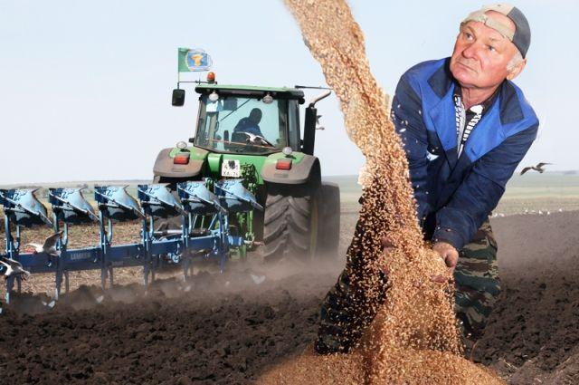 На проведение весенне-полевых работ нужно потратит почти 9,5 млрд рублей.