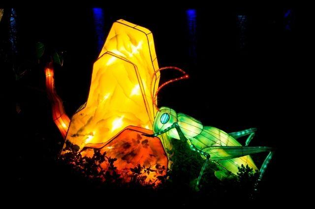 26 апреля в Калининграде начнётся «Фестиваль гигантских китайских фонарей»