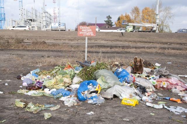 Свалки в Омске именно там, где нельзя.