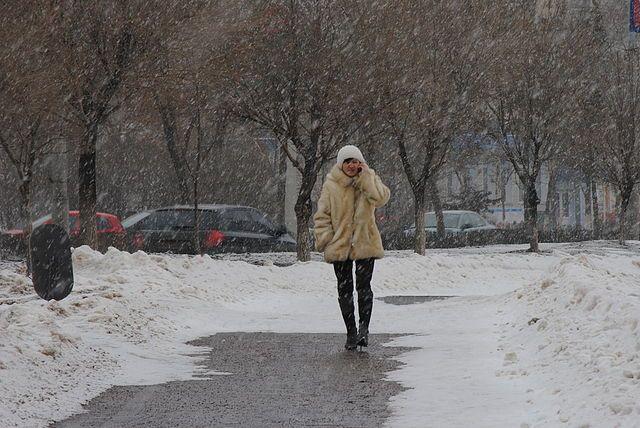 Чем ближе к Воркуте, тем будет холоднее.