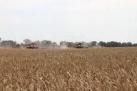Сельхозугодья региона освободились от снега, поэтому аграрии полным ходом готовятся к посевной.