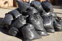 В Тюменской области планируют за три года ликвидировать все свалки