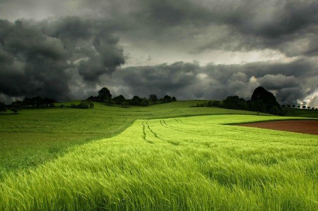 Синоптики предупредили об ухудшении погоды на «майских» праздниках: дата