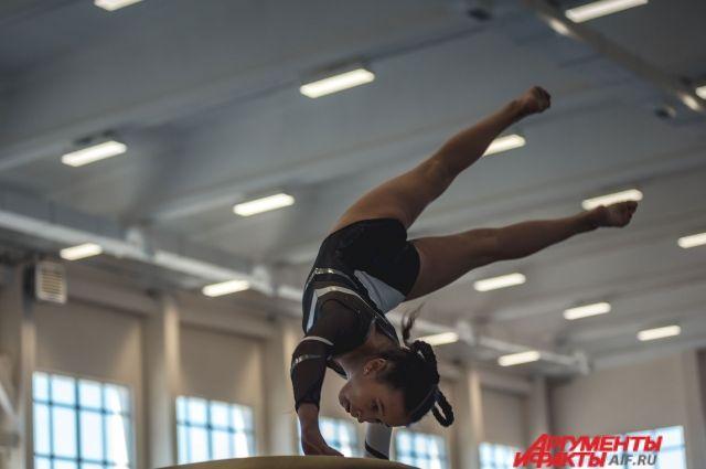В Оренбурге завершилось городское Первенство по спортивной  гимнастике