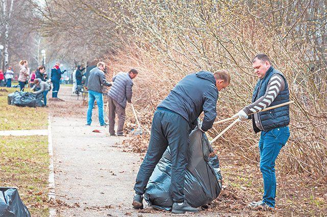 В сквере собрали весь мусор, а потом посадили кустарники и деревья.