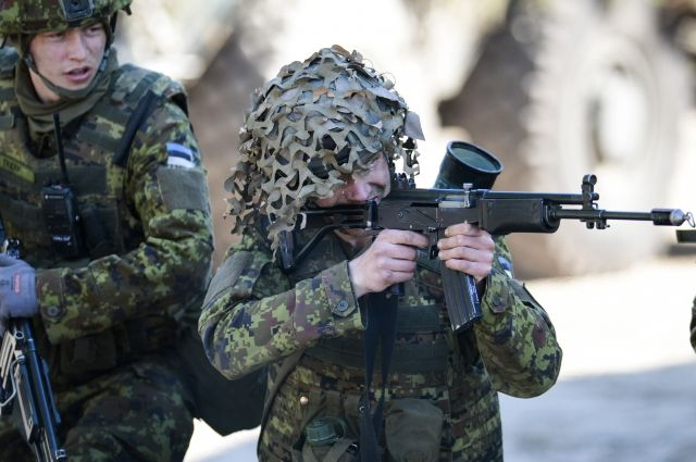 Эстонские военные пообещали возместить ущерб от учений НАТО photo