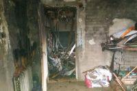 В Киеве сгорел приют для котов